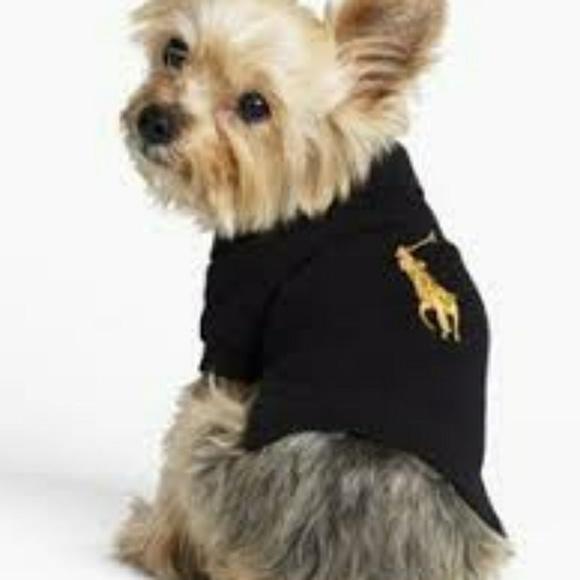 Polo By Ralph Lauren Sweaters Ralph Lauren Polo Dog Shirt Poshmark
